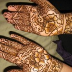 New Indian and Pakistani Mehndi Designs