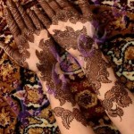 New Indian Mehndi Designs