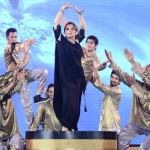 ARY Film Awards 2014