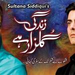 Sanam Saeed, Fawad Khan Zindagi Gulzar Hai
