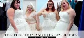 Cheap Plus Size Bridal Dresses Collection 2015-2016